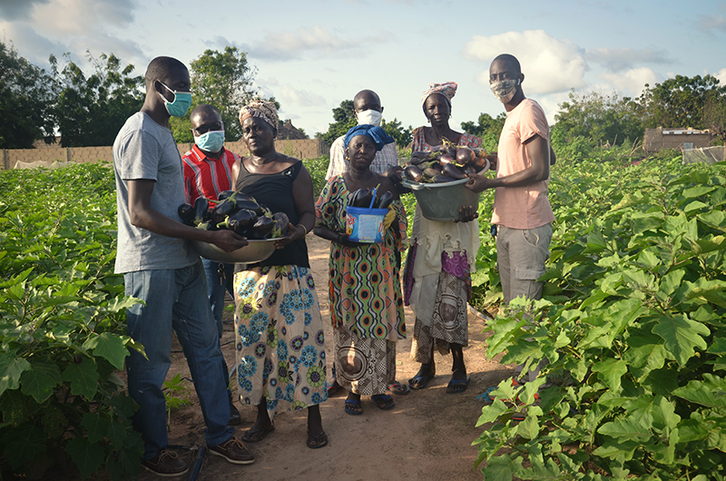 Let CREATE! Take You on a Virtual Tour of Mbossedji's Community Garden